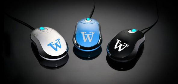 Comment devenir webmaster?
