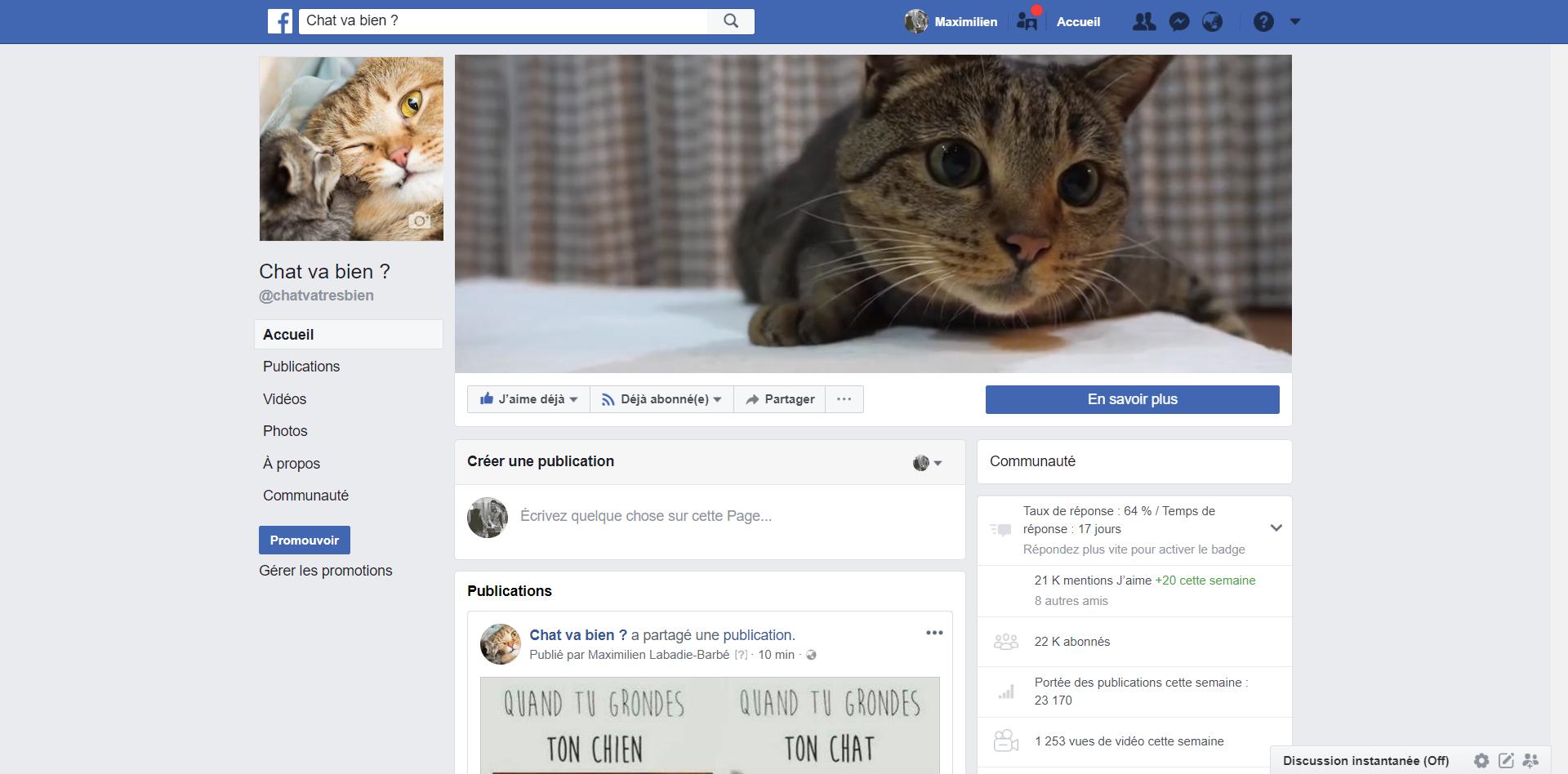 Vente aux enchères : Page Facebook sur les Chats